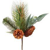 cone pine pick