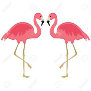 Vector illustration pink flamingo. Exotic bird. Cool flamingo decorative flat design element. Lovely flamingo