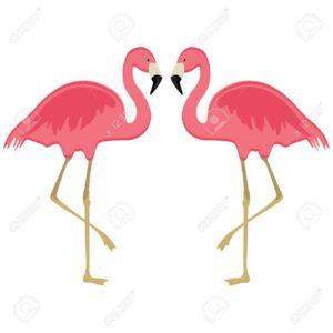 Vector illustration pink flamingo. Exotic bird. Cool flamingo decorative flat design element. Lovely flamingo